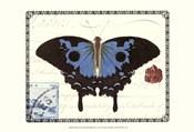 Butterfly Prose III