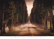 Cypress Lined Road II, Siena Tuscany
