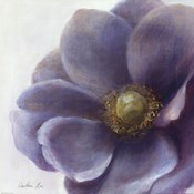 Contemporary Anemone