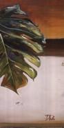 The Green Leaf II