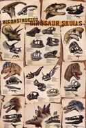 Dinosaur Skulls Reconstructed