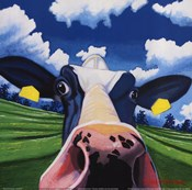 Cow II - NOSEY COW