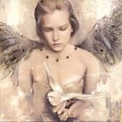 Reverie d'angel