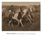 Horses Running II