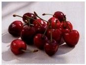 Morello Cherries II