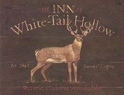 White Tail Hollow