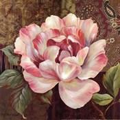 Esperance Rose - mini
