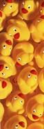 Quack Quack III