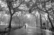 Poet's Walk, New York City