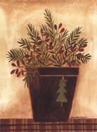 Pines in a Bucket