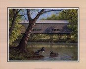Covered Bridge With Ducks