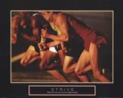 Strive - Race