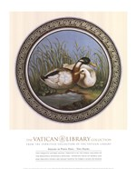 Two Ducks, (The Vatican Collection)