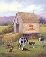 Annie's Home Grown Apples
