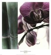 Bamboo I (Flower I)