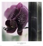 Bamboo II (Flower II)