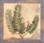 Leaf Botanicals I - petite