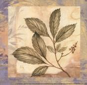 Leaf Botanicals II - petite