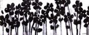 Black Flowers on White II