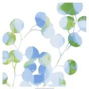 Blue Plums II