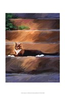 Trouble Cat