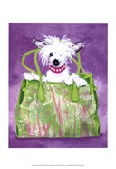 Chinese Crested Handbag
