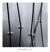 Four Reeds