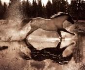 Running on Water III