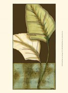 Small Palm Leaf Arabesque I (P)