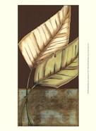 Small Palm Leaf Arabesque II (P)