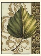 Small Leaf Assortment II (U)