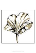 Small Tulip Sketch IV