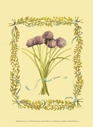 Small Chives