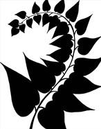 Leaf Silhouette IV