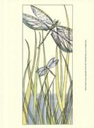 Small Gossamer Dragonflies II (P)