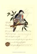 Small Romantic Dove II