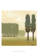 Moss Grove II