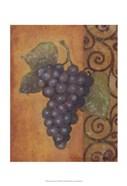 Scrolled Grapes II