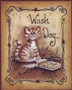 Wash Day - cat