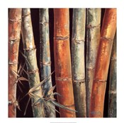 Caribbean Bamboo I