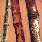 Bamboo Columbia II