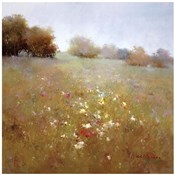 Meadow in Summer