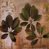 Botanica I