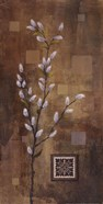 Willow Branch I