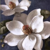 Magnolias on Blue I