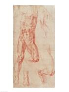 W.13r Study of a male nude, stretching upwards