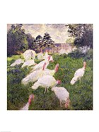 The Turkeys at the Chateau de Rottembourg, Montgeron, 1877