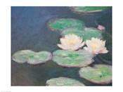 Waterlilies, Evening; detail