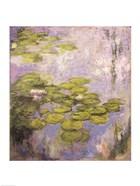 Nympheas, 1916-19