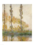 The Three Trees, Autumn, 1891